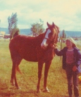 Melissa, my daughter, with my horse Rex. Rex was a former racehorse. 3rd Guineas 3 yr old Sydney